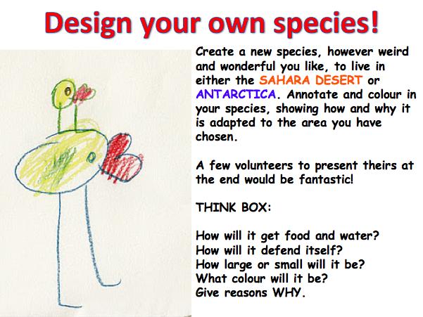 KS3 Deserts - Design your own Desert species