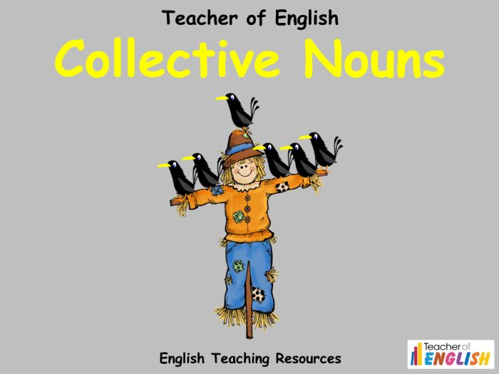 Collective Nouns (PowerPoint and worksheets)