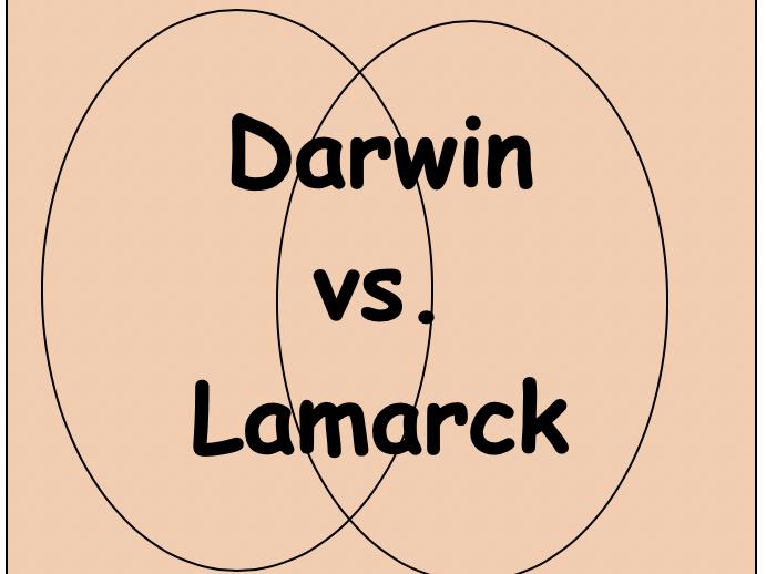 Venn Diagram Evolution