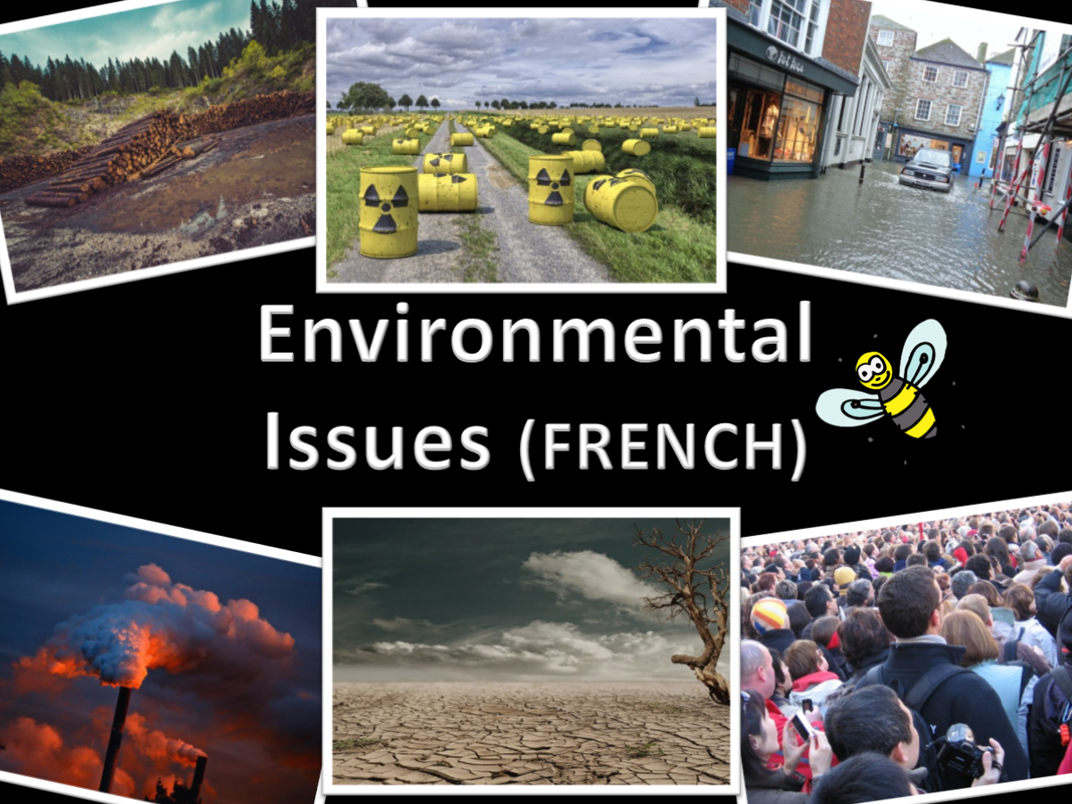 French environmental issues bundle