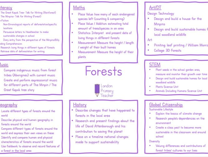 Forests Topic Overview Year 3