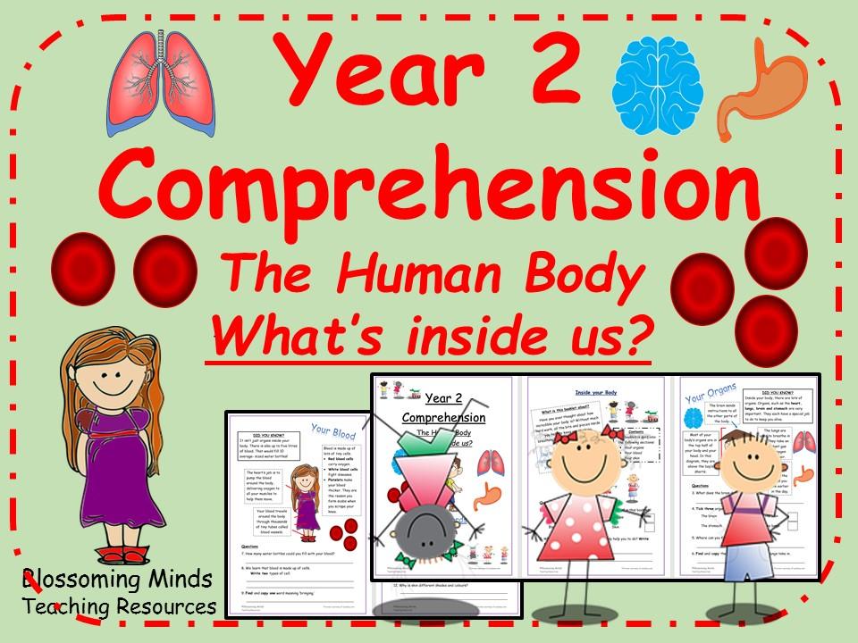 KS1 SATs Reading Comprehension - The Human Body