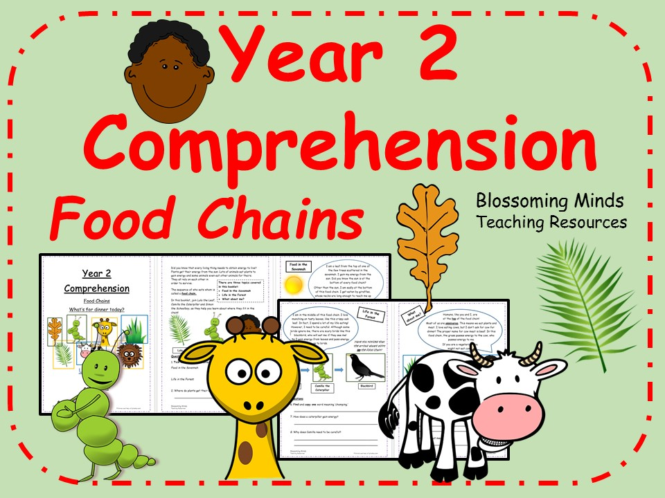 Year 2 Reading Comprehension - Food Chains