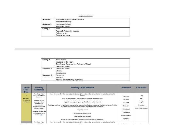 3 Year - 38 Week Scheme of Work for AQA GCSE PE Theory
