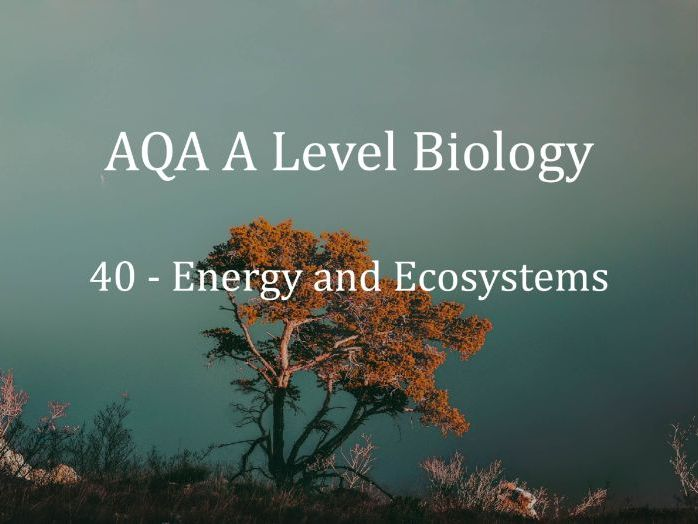 AQA A Level Biology Lecture 40 - Energy and Ecosystems