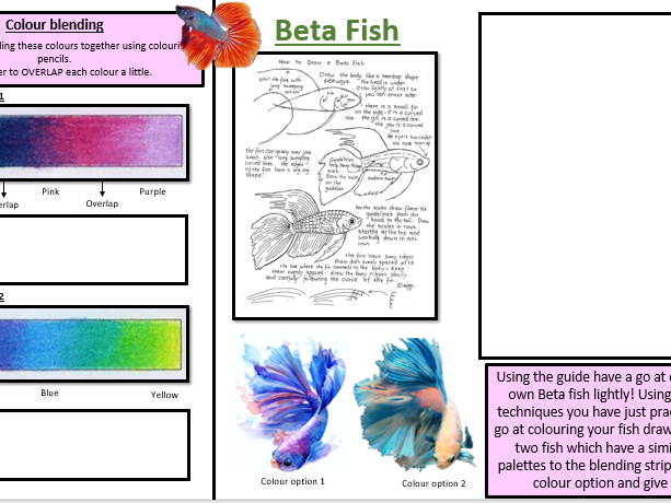 Colouring pencil beta fish cover worksheet