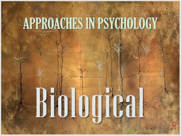 Approaches in Psychology: Biological
