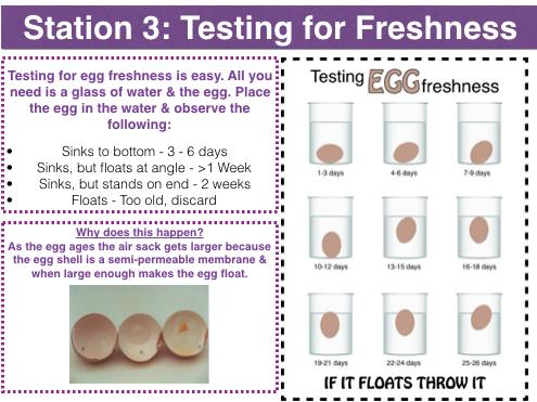 Egg coagulation/protein denaturation