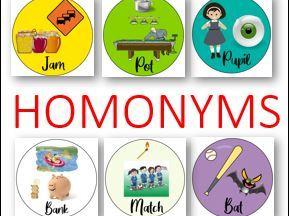 Homonyms PPT