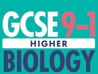 GCSE Biology Triple Notes - Organisation