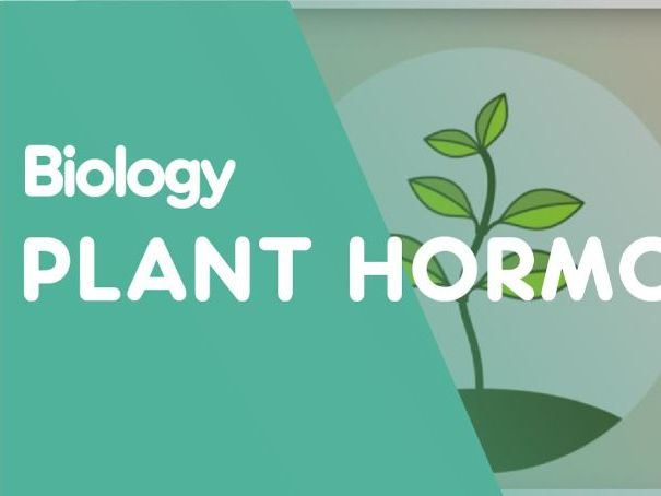 Chemical Control in Plants Edexcel B