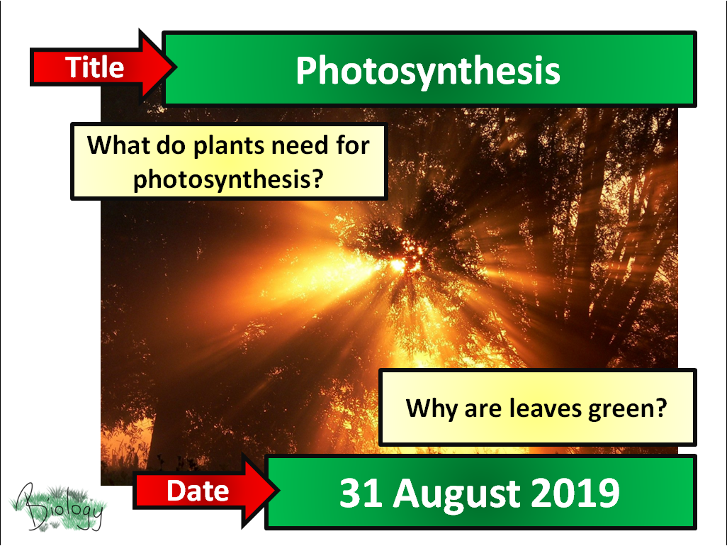 AQA Activate 9.4 - Photosynthesis