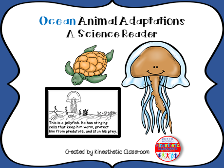 Ocean Animal Adaptations - A Science Reader