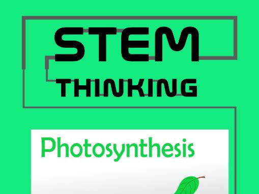 Photosynthesis Interactive Paperless PDF Quiz, Middle and High School Biology