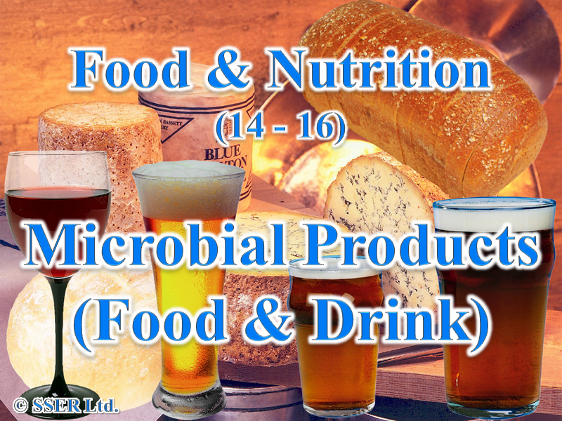 4.1 Microbial Products - Food and Drink