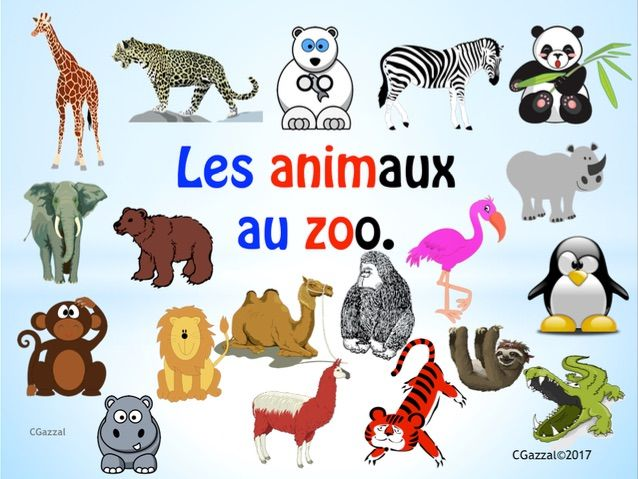 French – Zoo Animals.