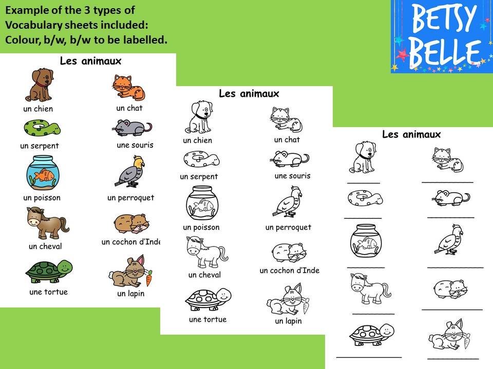 French Vocabulary Sheets: Les animaux