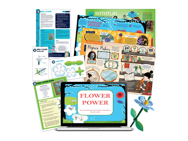 Year 3 Get to know the different parts of a flower by building a 3d model.