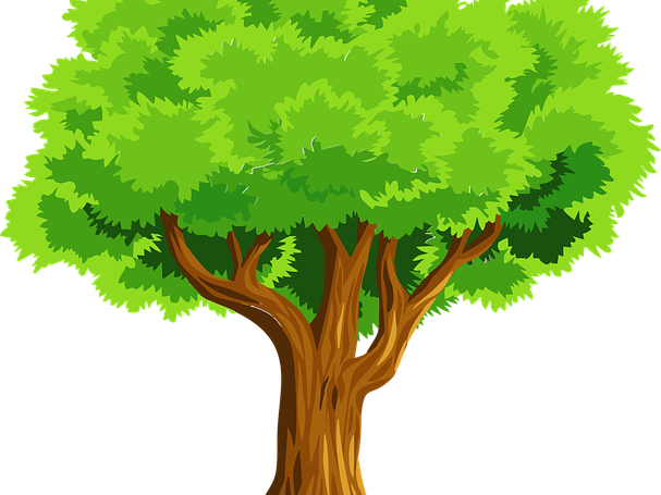 Tree Colouring Sheet