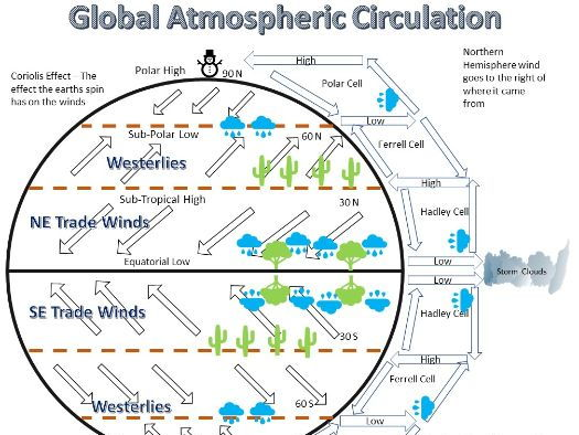 climatic hazards (atmospheric circulation) essay This is known as the hadley cell in the tricellular model of air circulation   rossby waves and the polar front jet stream affects the weather in temperate  latitudes.