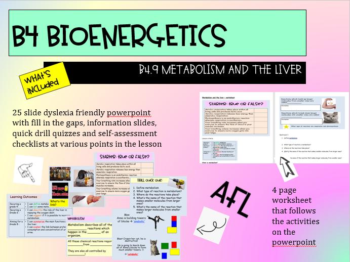 B4.9 Metabolism &  Liver: AQA 9-1 GCSE