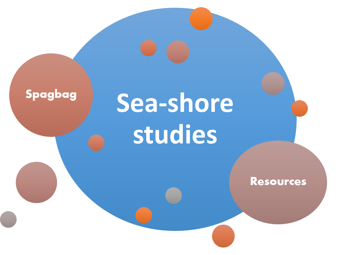 sea-shore studies our oceans our future