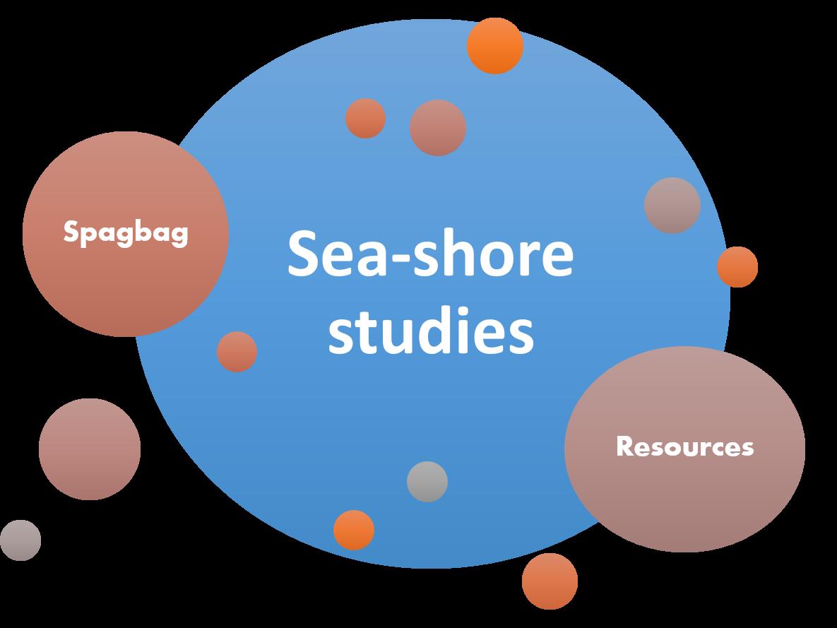 sea-shore studies our oceans our future