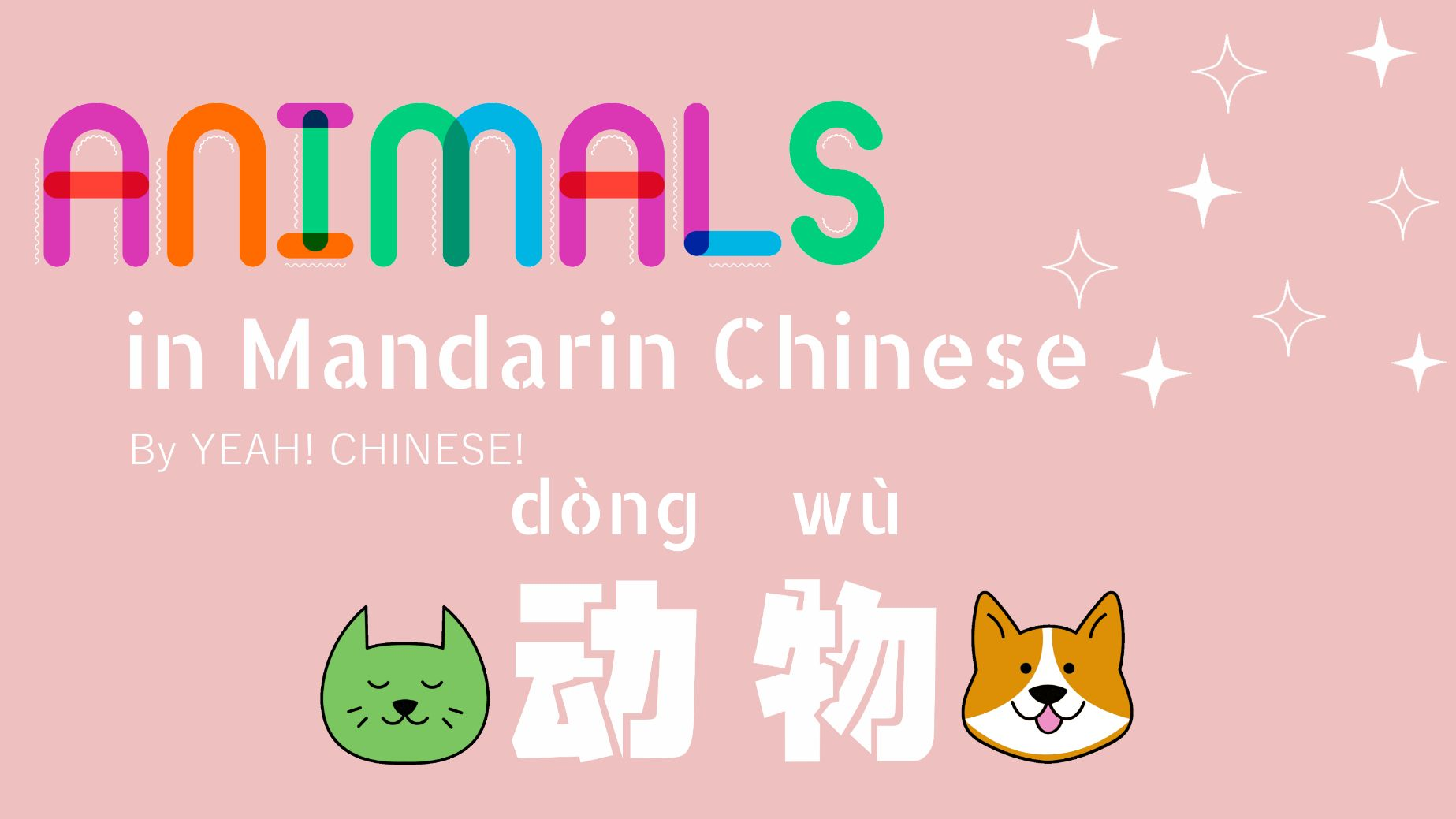 All About Animals (in Mandarin Chinese) - 动物