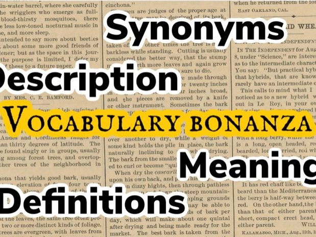 Vocabulary Bonanza: Perfect for home learning