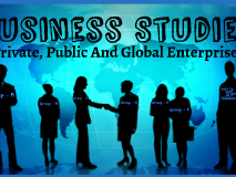 Private public and global enterprises