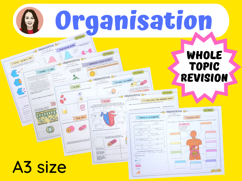 Organisation Mindmaps | GCSE Biology 9-1
