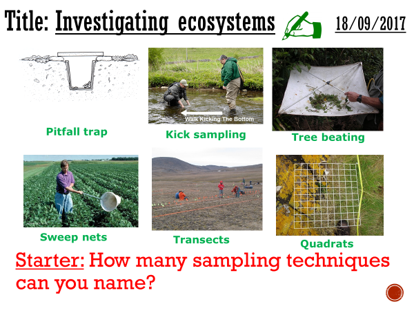 Investigating ecosystems - complete lesson (A2)