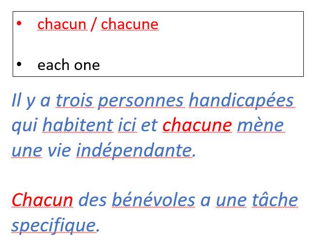 Indefinite pronouns in French.