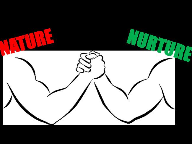 Nature/nurture debate - B1 Human Lifespan Development