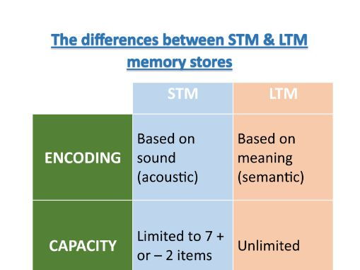 a comparison of stm and ltm in psychology Psychology a, aqa essay help cognitive psychology (sm), short-term memory (stm) and, long-term memory (ltm) each store has duration.