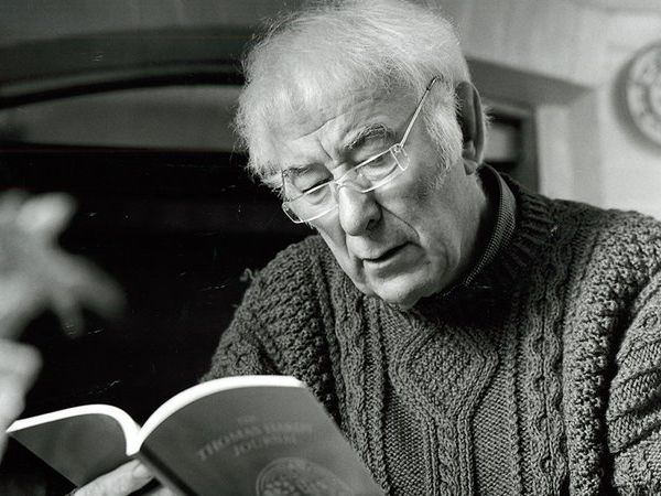 Seamus Heaney CCEA A Level Poetry Analysis