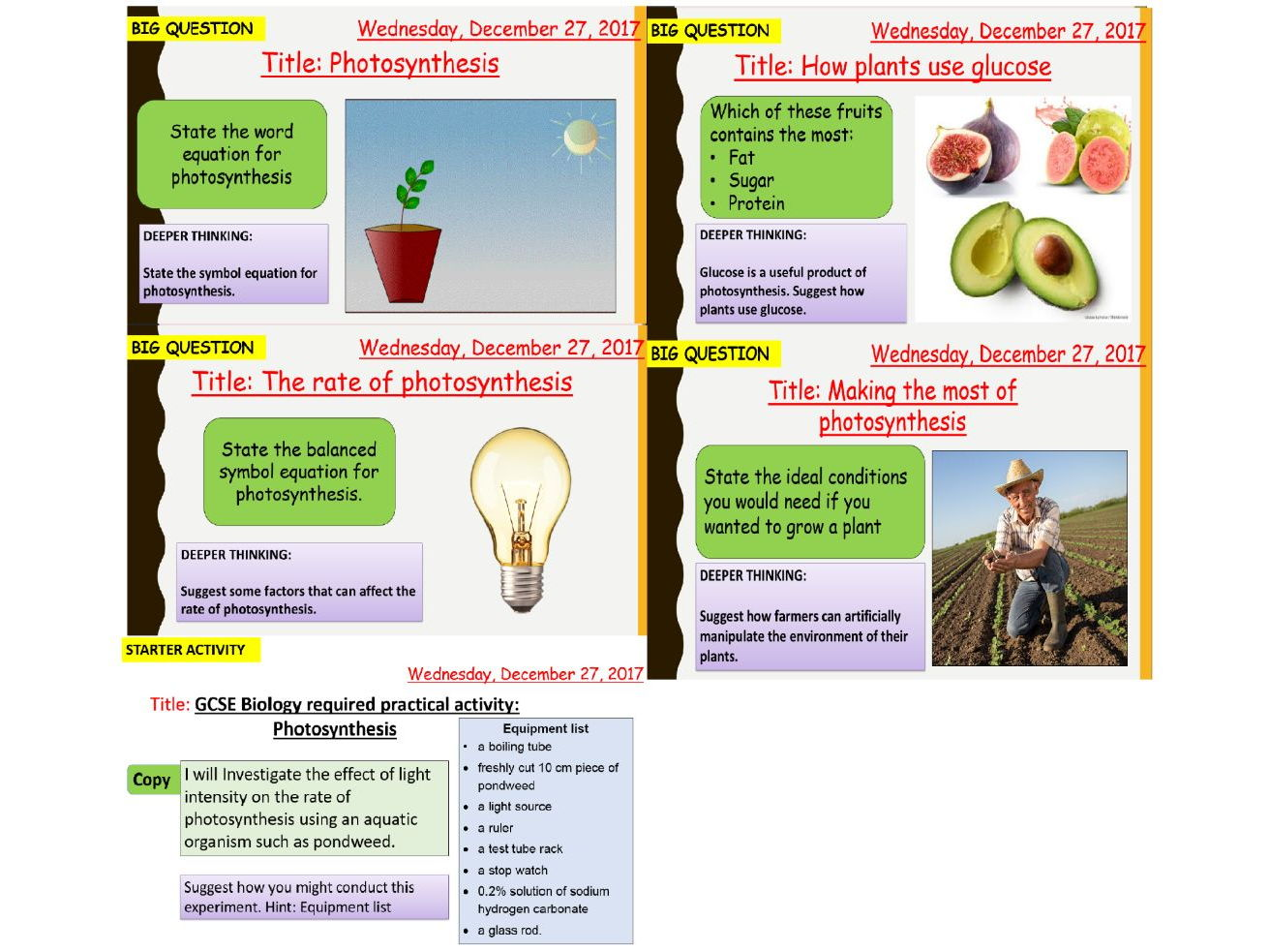 AQA new specification-B8 Photosynthesis-Complete bundle