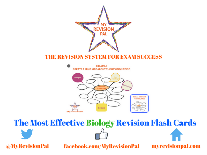 The Most Effective Revision Flash Cards (For Biology)