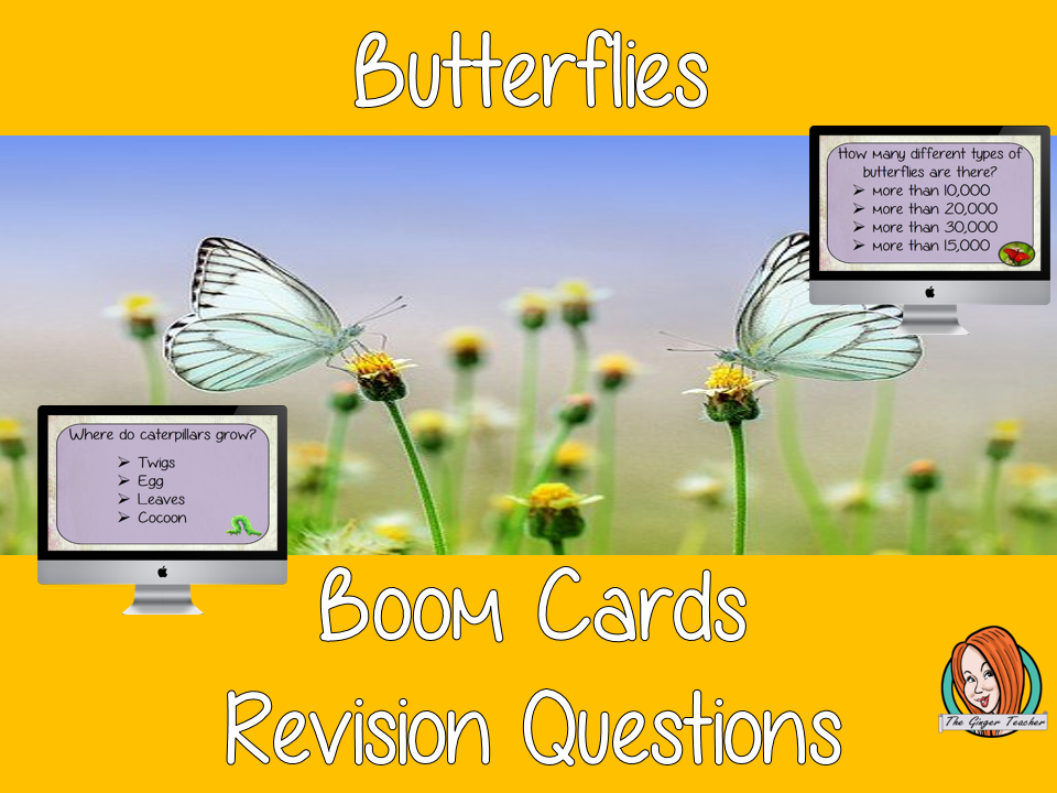 Butterflies Revision Questions