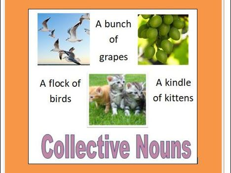 COLLECTIVE NOUNS Posters and Cards
