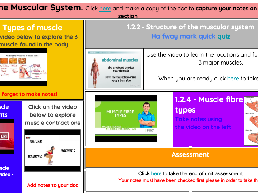 NCFE VCERT NEW SPEC UNIT 1 MUSCULAR SYSTEM REVISION/INDEPENDENT INTERACTIVE STUDY SHEET