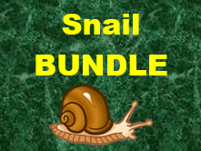 Escargot (Snail in French) Vocabulary Bundle