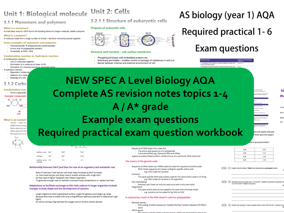 NEW SPEC AS BIOLOGY AQA FULL REVISION NOTES A/A* + required practical exam questions workbook (a level year 1)