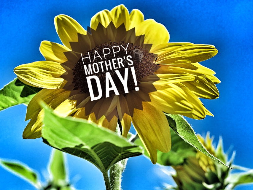 Mother's Day Colouring Patterns