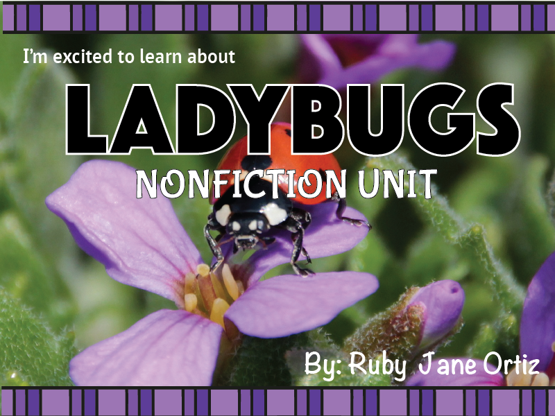 Ladybug Nonfiction Unit