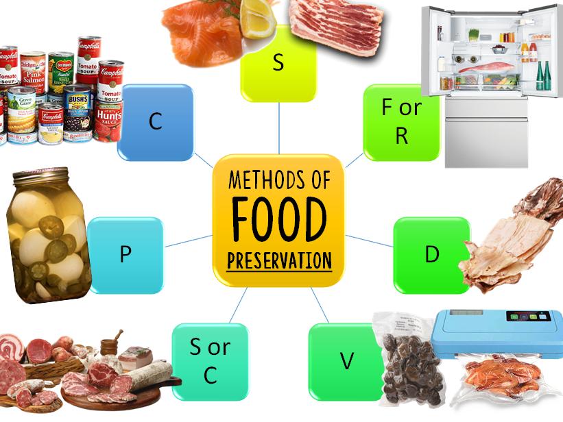 Methods of Food Preservation Worksheet