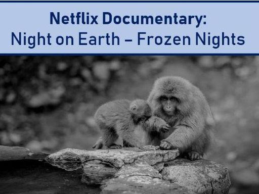 Night on Earth - Frozen Nights