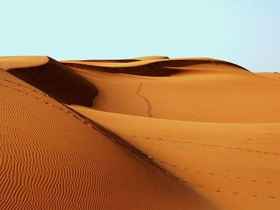 Finding the main idea - deserts