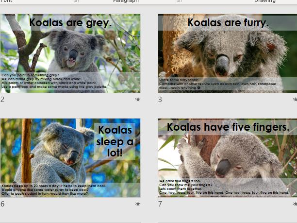 Koala Sensory Science