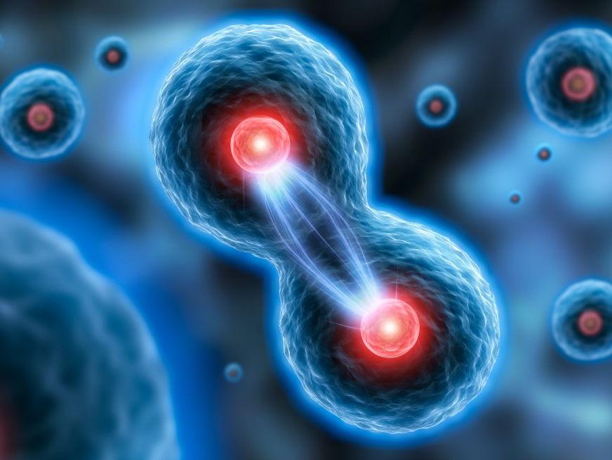 OCR A-level Biology Module 6.1, 6.2 & 6.3